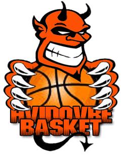 Hvidovre Basket logo