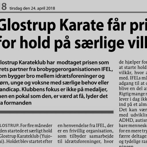 folkebladet karate artikel 2018 UDSNIT darken